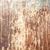 さびた · 表面 · テクスチャ · メタリック · 腐食 - ストックフォト © juhku