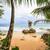 sziklaformáció · Costa · Rica · tengerpart · Karib · part · fa - stock fotó © juhku