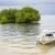болото · берега · Таиланд · пляж · солнце - Сток-фото © juhku