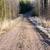 tájkép · földút · vidék · ősz · felhők · háttér - stock fotó © juhku