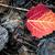 立って · 紅葉 · 男 · 抽象的な - ストックフォト © juhku