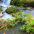 küçük · çağlayan · orman · park · Malezya · borneo - stok fotoğraf © juhku