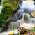 kicsi · vízesés · dzsungel · park · Malajzia · Borneo - stock fotó © juhku