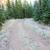 rural · camino · de · tierra · rima · paisaje · carretera · forestales - foto stock © juhku