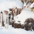 冬 · スプルース · カバー · 氷 · 長い - ストックフォト © juhku