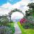 rozen · gazon · bloem · textuur · abstract · natuur - stockfoto © julietphotography