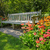 legno · panchina · luminoso · fioritura · fiori · giardino - foto d'archivio © julietphotography