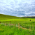 kanaal · Schotland · water · gras · weg - stockfoto © julietphotography