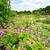 tuin · steen · pad · natuurlijke · landscaping · huis - stockfoto © julietphotography