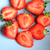 fresh strawberries in a blue bowl close up stock photo © julietphotography