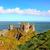 irlandais · château · célèbre · pierre · arbre · bâtiment - photo stock © julietphotography