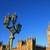 Abtei · Straße · London · Straßenschild · england · Musik - stock foto © julietphotography