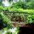 öreg · híd · gyönyörű · kert · virág · út - stock fotó © julietphotography
