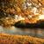 güzel · sonbahar · park · öğleden · sonra · sonbahar · su - stok fotoğraf © Julietphotography