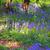 tapete · azul · flores · primavera · floresta · panorama - foto stock © julietphotography