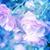 floral · arte · suave · enfoque · foto - foto stock © julietphotography