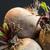 três · fazenda · fresco · raiz · de · beterraba · inteiro - foto stock © juniart