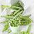 green pea in the buckets stock photo © karaidel