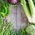 groene · groenten · oud · hout · prei · bonen · courgette - stockfoto © Karaidel