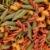 colorato · pasta · alimentare · verde · rosso · giallo - foto d'archivio © karandaev