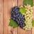 красный · белый · виноград · деревянный · стол · копия · пространства - Сток-фото © karandaev
