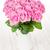 庭園 · ピンク · バラ · 花束 · 木製のテーブル · 先頭 - ストックフォト © karandaev