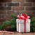 karácsony · ajándék · doboz · fenyőfa · ág · fa · asztal · ház - stock fotó © karandaev