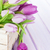 purple tulips box over wooden table stock photo © karandaev