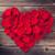 cuore · rose · fresche · isolato · bianco · instagram - foto d'archivio © karandaev