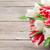 színes · tulipánok · virágcsokor · piros · fehér · fából · készült - stock fotó © karandaev