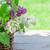 colorido · lila · flores · cesta · jardín · mesa - foto stock © karandaev