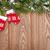 Christmas mitten decor and snow fir tree stock photo © karandaev