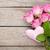 rosa · rose · rugiada · primo · piano · pastello · colorato - foto d'archivio © karandaev