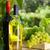 vin · raisins · blanche · vin · rouge · bouteilles · vigne - photo stock © karandaev