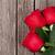 red roses over wooden table stock photo © karandaev