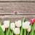 fehér · tulipánok · fából · készült · űr · húsvét · virág - stock fotó © karandaev
