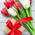 white and red tulips and gift box stock photo © karandaev