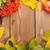 sonbahar · yaprakları · karpuzu · ahşap · bo · doğa · arka · plan - stok fotoğraf © karandaev
