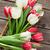 színes · tulipánok · virágcsokor · fa · asztal · piros · fehér - stock fotó © karandaev