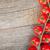 kerstomaatjes · tabel · houten · tafel · voedsel · gezondheid · salade - stockfoto © karandaev