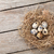 quails eggs in nest on rustic wooden background stock photo © karandaev