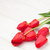 red tulips bouquet over wood stock photo © karandaev