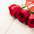 róż · wody · Fotografia · trzy · kroplami · wody · biały - zdjęcia stock © karandaev
