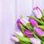 紫色 · チューリップ · 花束 · 木製のテーブル · コピースペース · 花 - ストックフォト © karandaev