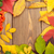 autumn leaves and rowan berries over wood background stock photo © karandaev
