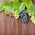 bunch of red purple and white grapes stock photo © karandaev