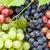köteg · színes · szőlő · levelek · bor · háttér - stock fotó © karandaev