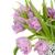 virágcsokor · rózsaszín · tulipánok · zöld · edény · izolált - stock fotó © karandaev