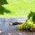 fehér · bor · üveg · szőlő · szőlő · fiatal - stock fotó © karandaev