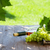 white wine bottle and white grape stock photo © karandaev
